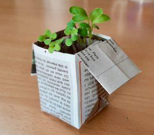 visuel origami